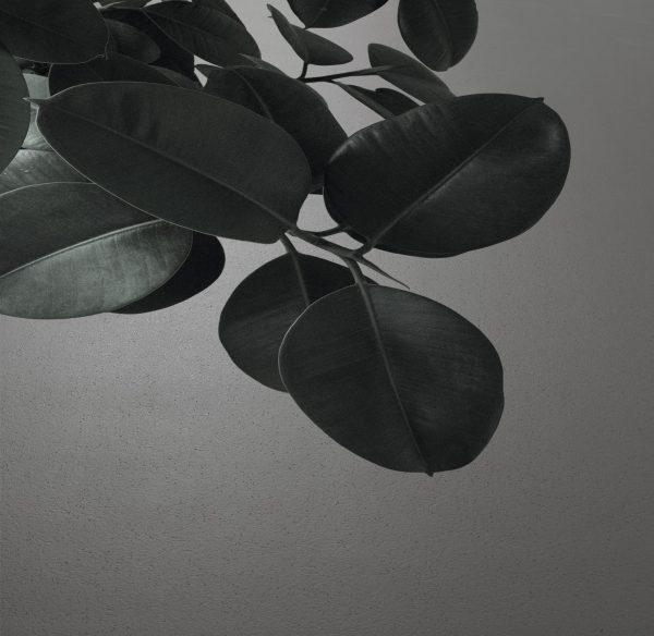Artigo Lava TXL miljøbilde3